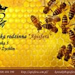dlaczego warto jesc pyłek przod